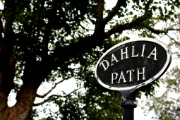 Follow Dahlia Path to get to the Power Family Lot.